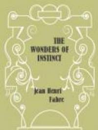 The Wonders Of Instinct