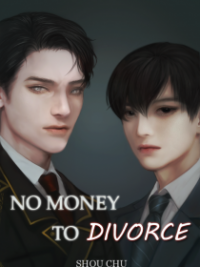 No Money To Divorce