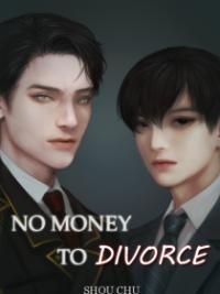 No Money To Divorce